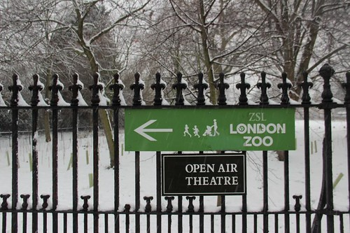 Regents park in the snow January London