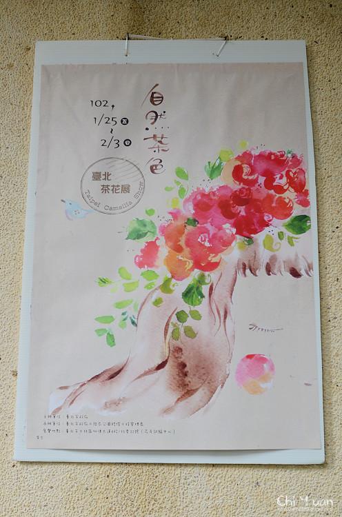 2013台北茶花展03.jpg