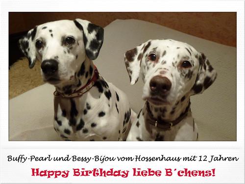 Buffy-Pearl und Bessy-Bijou vom Hossenhaus mit 12 Jahren by Dalmatiner vom Hossenhaus