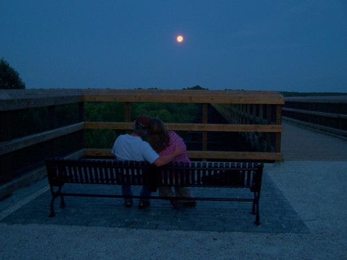 Stargazing at High Bridge