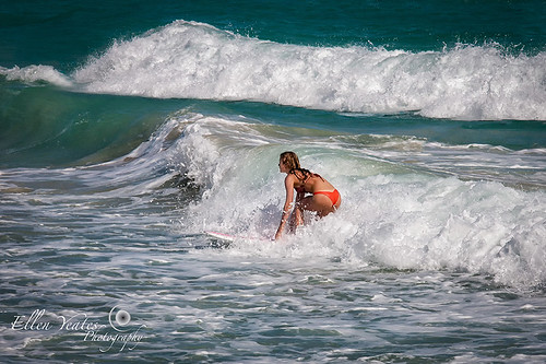 The Surfing Lady
