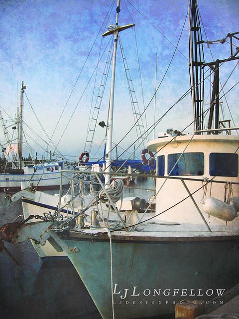 Spong Dock Evening 38/365