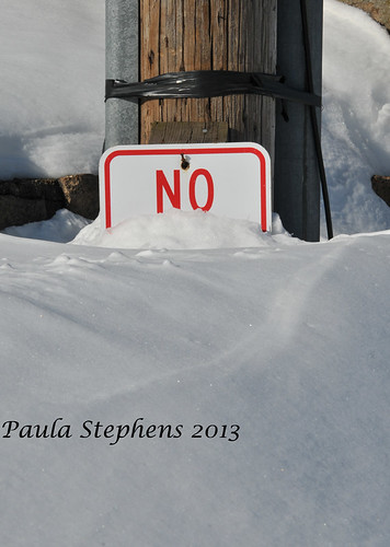 """No . . . . "" by Paula Stephens"