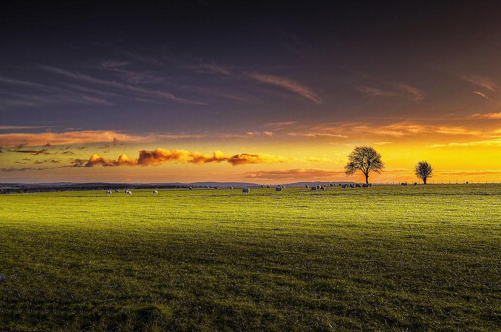 Un lever de soleil sur la campagne anglaise la petite for Photo campagne anglaise