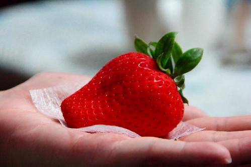 20130212_水蜜桃草莓_07