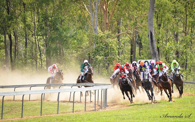 races_7233 fe