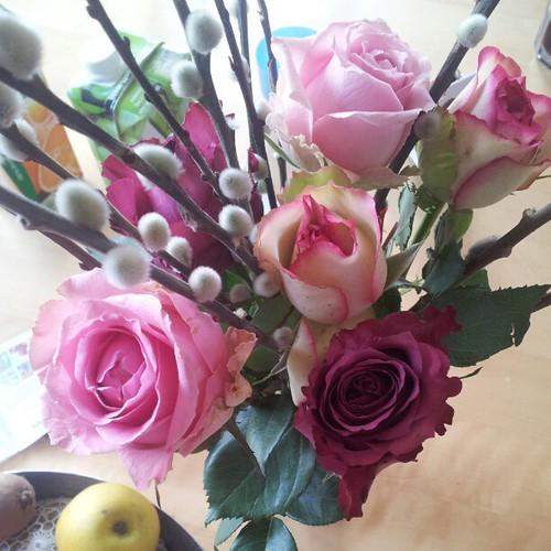 endlich frische Rosen.