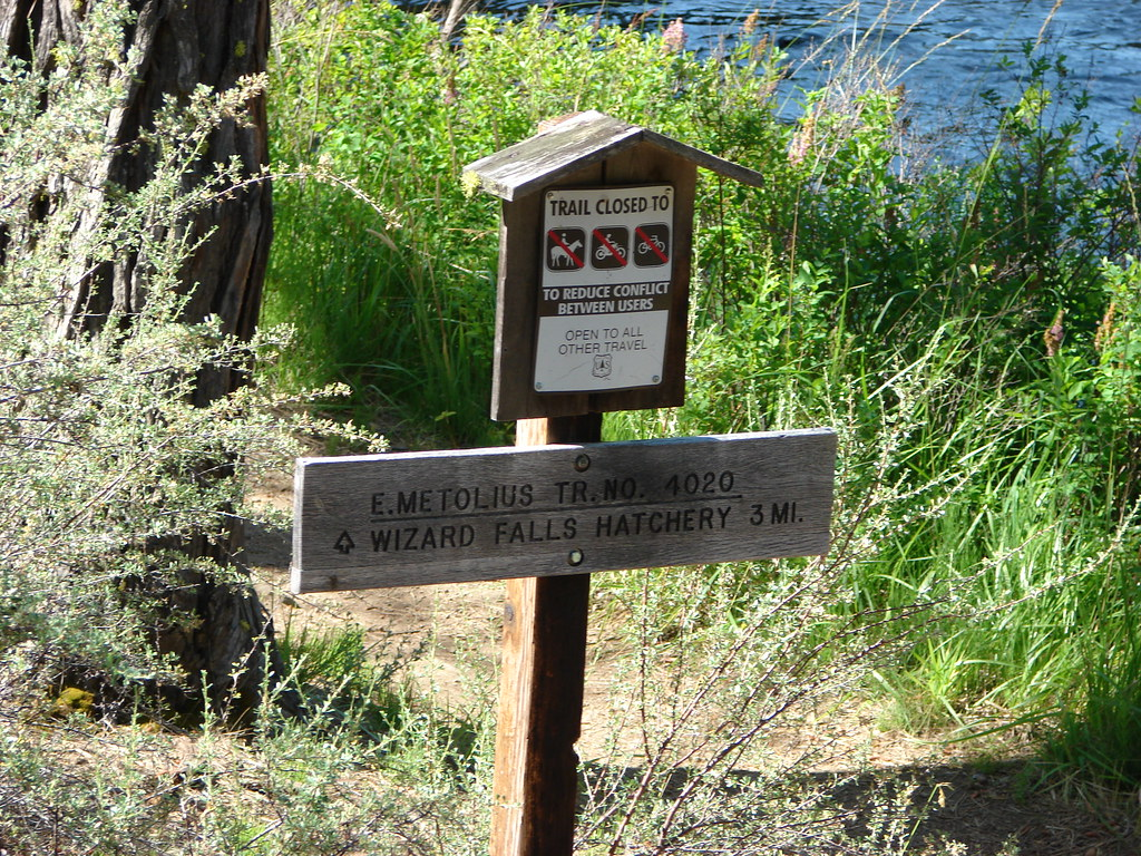 East Metolius Trail
