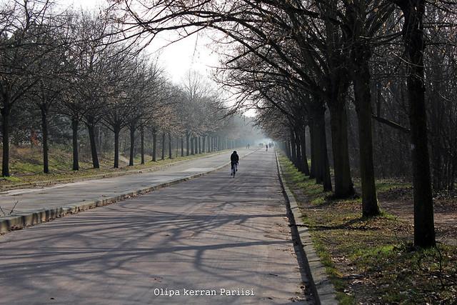 parcs13