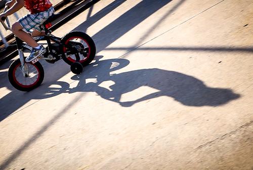 bike-8517