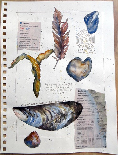 from my sketchbook ~ beach treasures