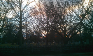 Twilight in Cemetery