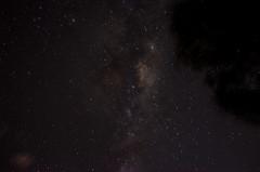 20130317-DSC_0318