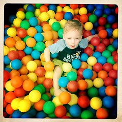 food(0.0), play(1.0), ball pit(1.0), toy(1.0),