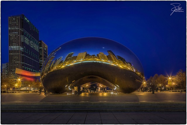Blue Hour at the Bean