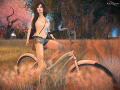 RACH Studio - Bike on Grass Field