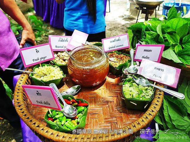 泰國華欣 農業觀光推廣公園 9