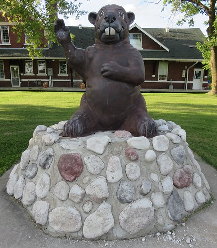 canada ontario on rainyriverdistrict rainyriver roadsidecanada animals statues beavers northamerica