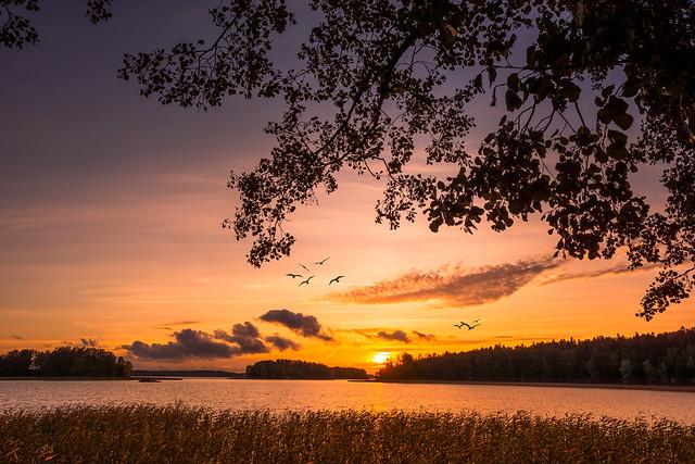 : GOLDEN SUNSET