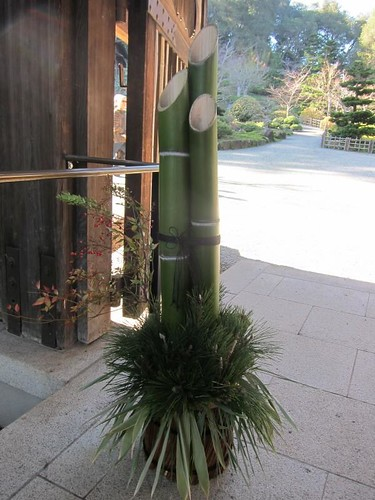 Hakone Japanese Gardens, Saratoga, CA, bamboo IMG_2280