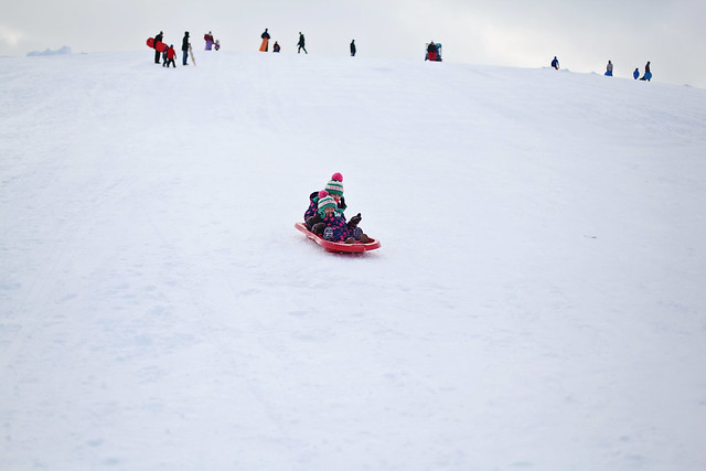 Mooney's Bay toboggan hill