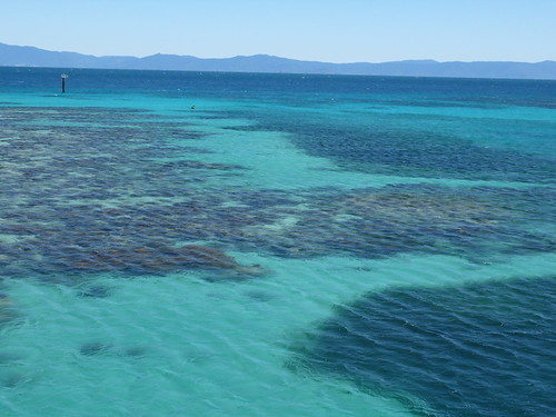 大堡礁Great Barrier Reef, Queensland, Australia (85)