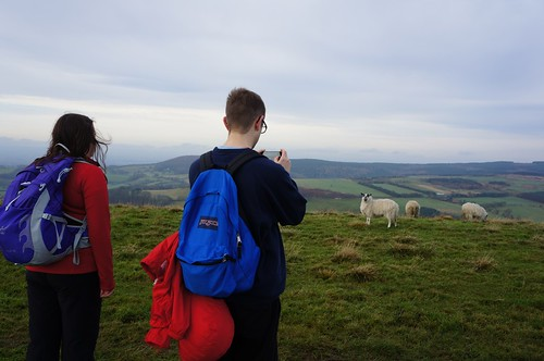 Tourists... and sheep, North York Moors
