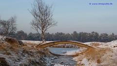 Winter in Holland, Bridge at Heidestein, Zeist - 022