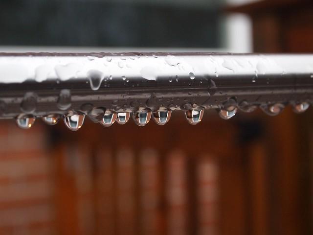 January 13 - RAIN