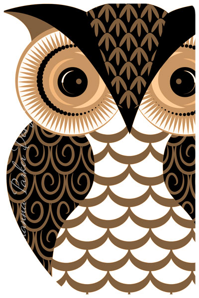 Patterned-Owl