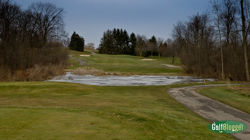 Winter Golf At Fox Hills-1010519
