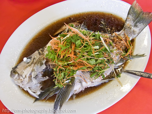 hoi dai gai, maori seaperch, kam ling seafood restaurant, tawau R0021154 copy