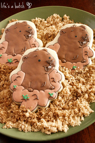 Groundhog Cookies.