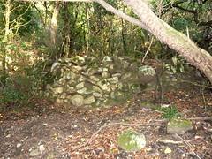 Ancienne bergerie de San Martinu : une carbonara (charbonnière) proche de la bergerie