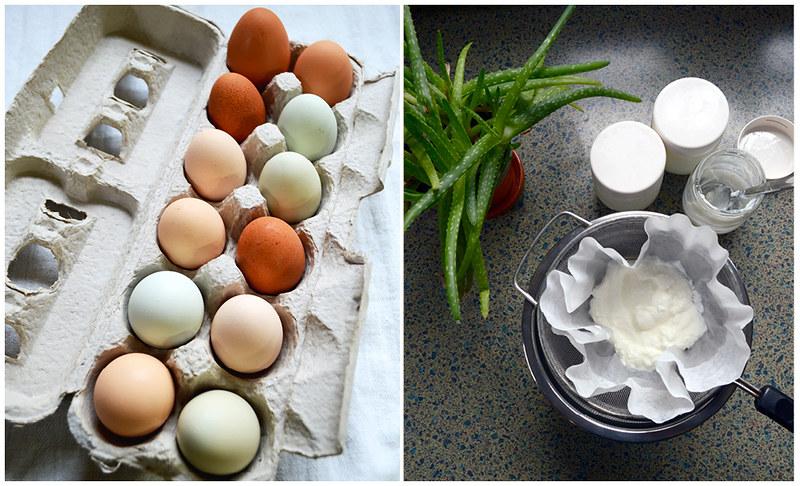 Eggs & Yogurt