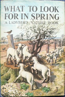 Ladybird - A Ladybird Nature Book: What to look for in Spring