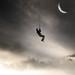 Velvet Skies by Digit_AL