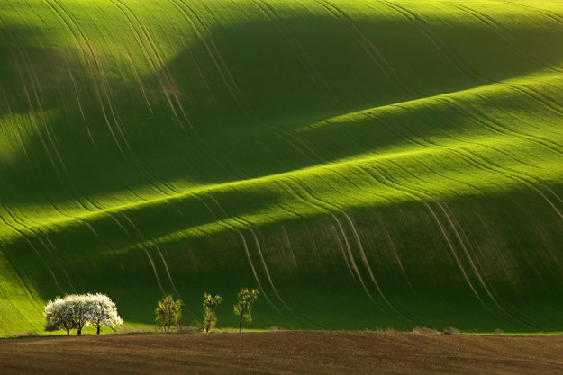 Stunning-Green-Rolling-Fields-of-Moravian-004