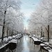 The frosty Bloemgracht of Amsterdam by B℮n