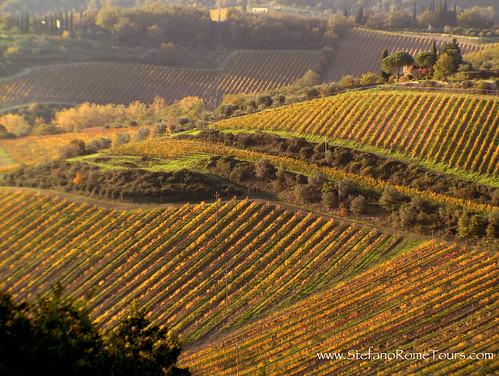 Chanti, Tuscany (Italy)