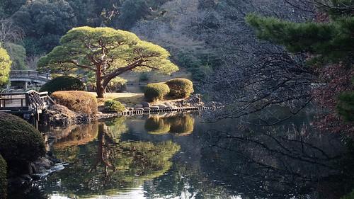 Shinjuku Imperial Garden 1