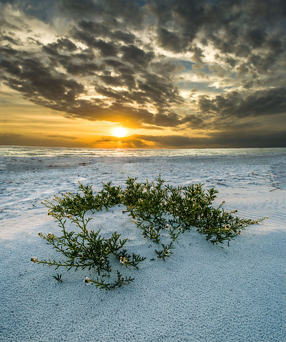 sunset beach landscapes seascapes florida sarasota lidokey dudrowphotography