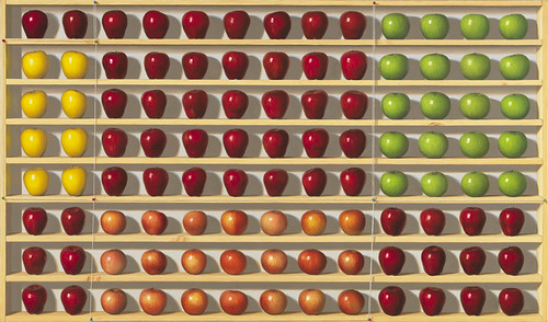 Robert C. Jackson, piets-apple-collection-819