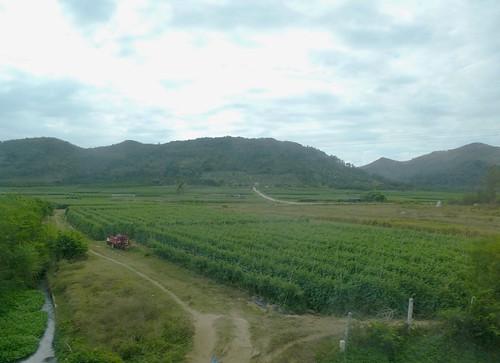 Hainan13-Wuzhishan-Boao-Bus (60)