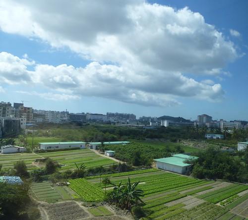 Hainan 13-Haikou-Sanya-Train (198)