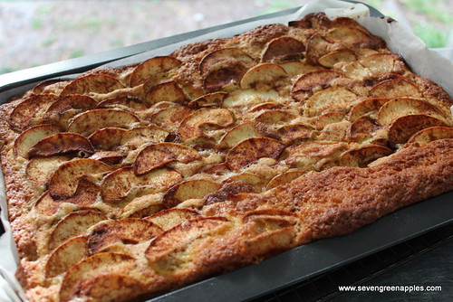Delicious Hoover Apple Cake