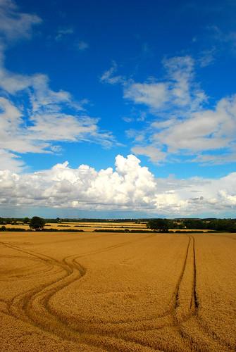 sky weather clouds vista