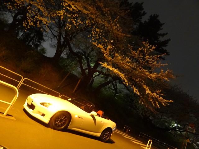 S2000 Sakura