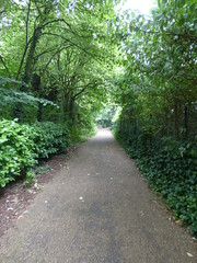 Kings Norton Local Nature Reserve - path