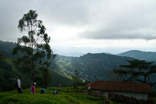 Imagen de Montañas en el área rural de Pijao, Quindio